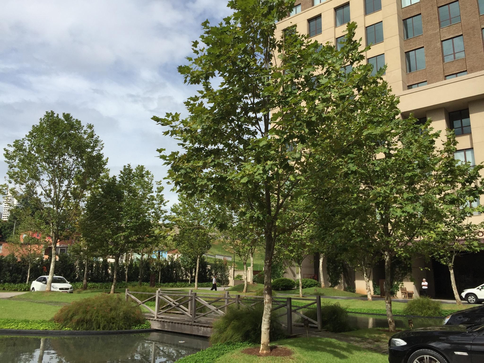 Condomínio Cidade Jardim