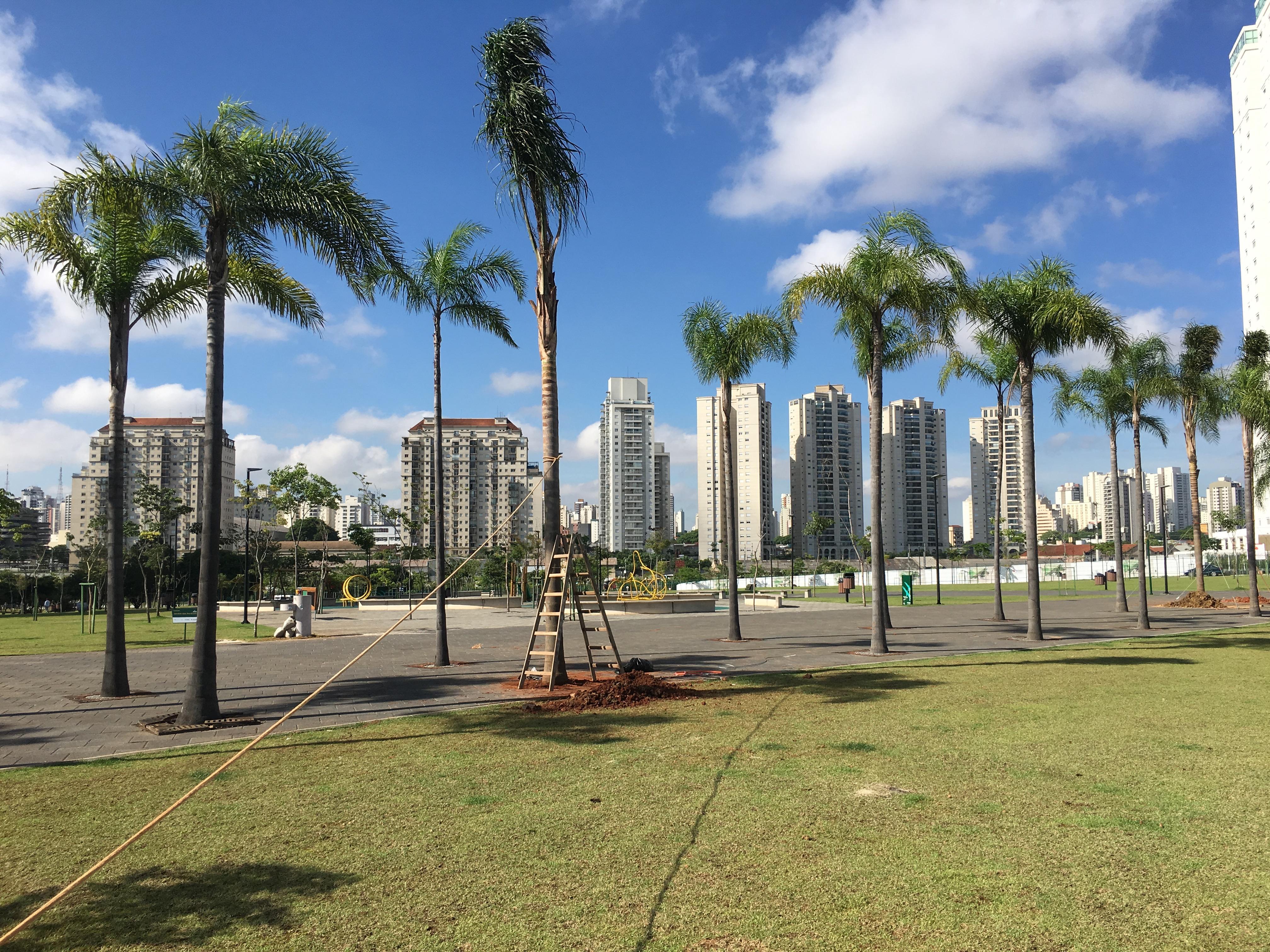 Praça Pública / Jardim das Perdizes